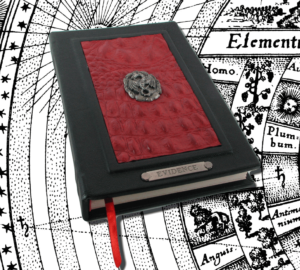 Dragonhyde Journal